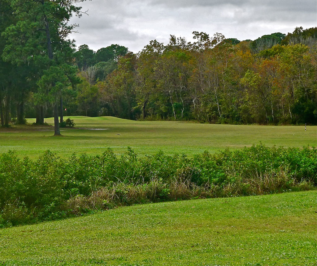 Blue Cypress Golf Club #3