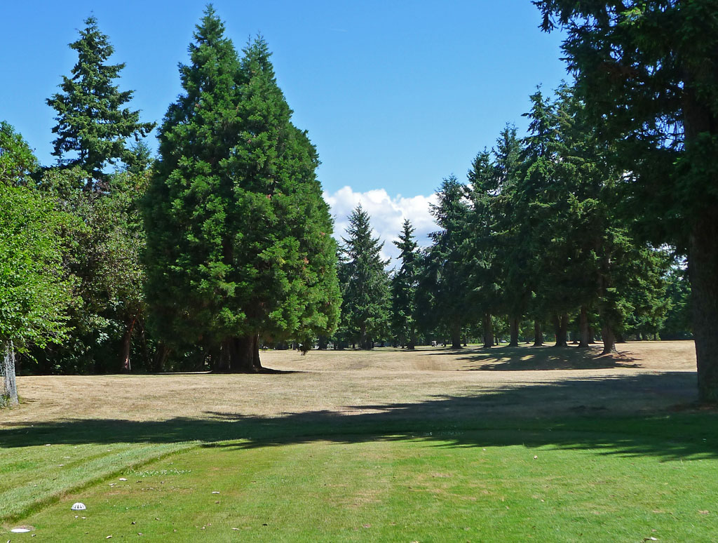 Ft. Steilacoom GC #7
