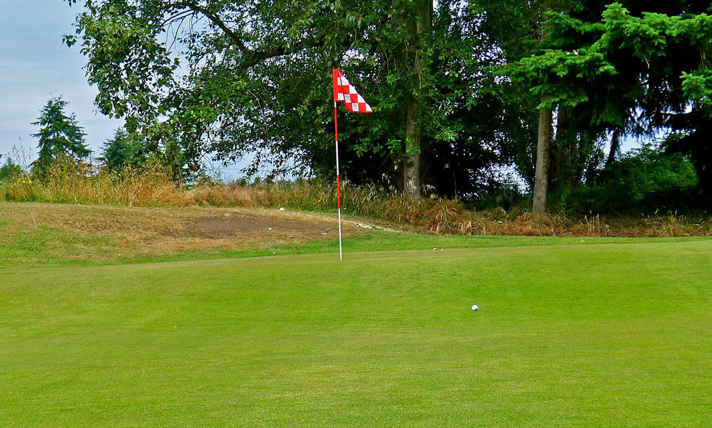 Port Townsend GC #8