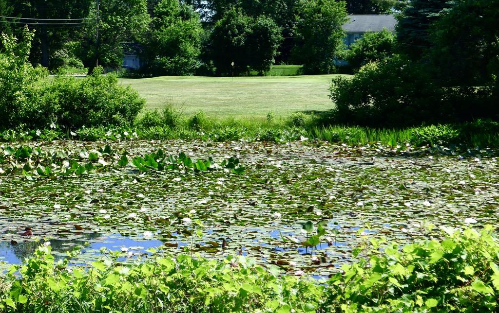 Lake Lackawanna GC #3