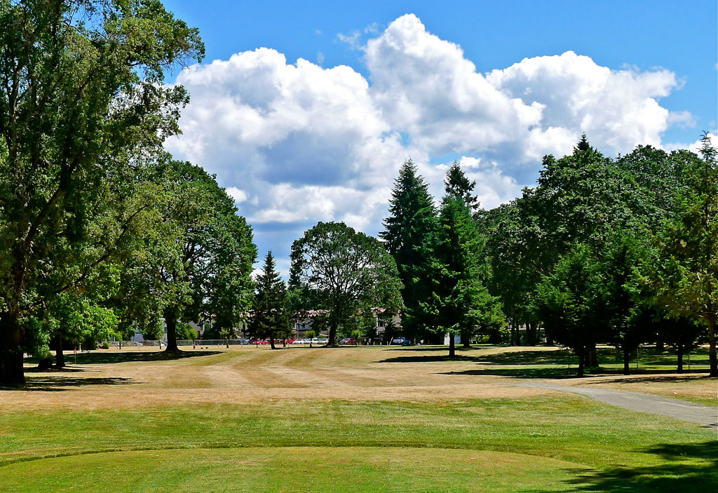 Ft. Steilacoom GC #9